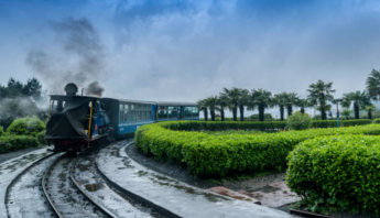 delighting-darjeeling-smallpic